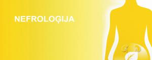 nefrologija_web